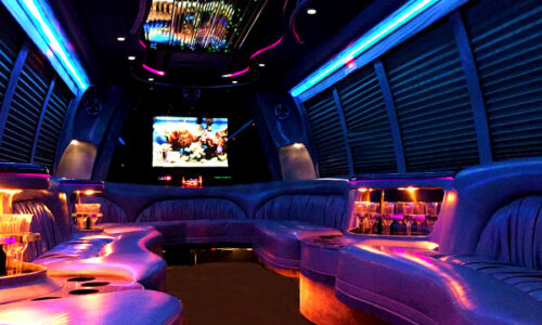 18 passenger party bus NY